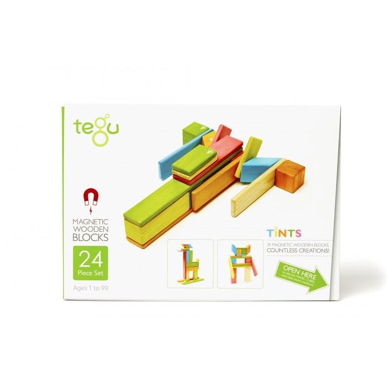 Imagen de Tegu 24 piezas