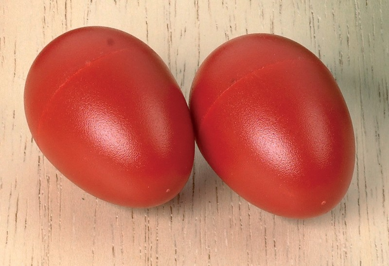 Imagen de Huevos de plástico