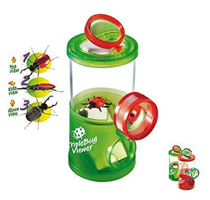 Img Galeria Observatorio de insectos