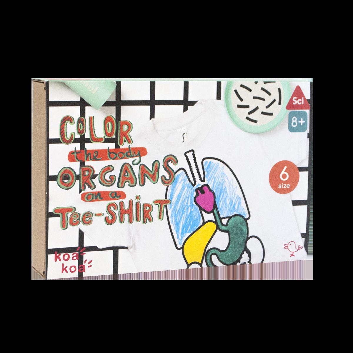 Imagen de Kit de actividades -Colorea tus órganos en una camiseta- Talla 6 años