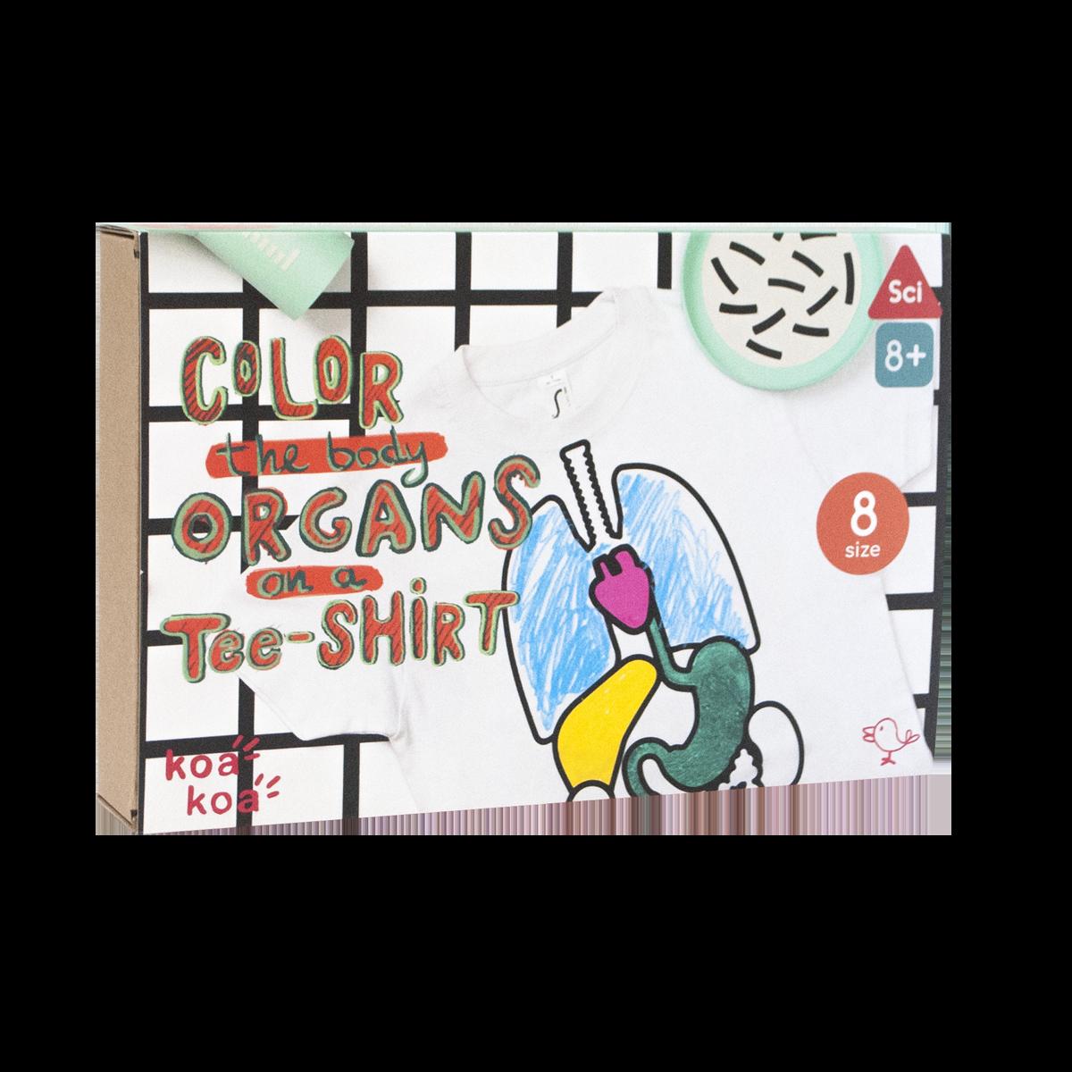 Imagen de Kit de actividades -Colorea tus órganos en una camiseta- Talla 8 años