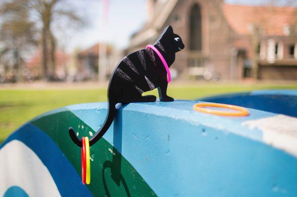Imagen de Lanzamiento de anillos gato